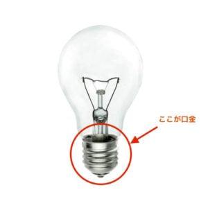 口金 電球のサイズ